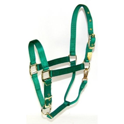 Hamilton 1-Inch Nylon Halter with Adjustable Chin, Green - Large Size
