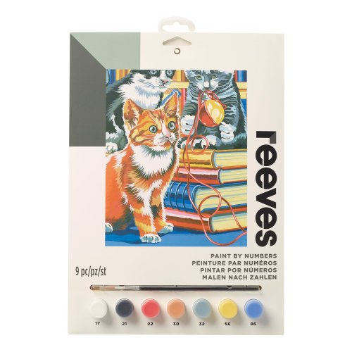 Reeves Painting By Numbers-Kitten on Books