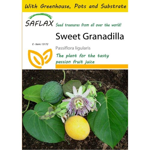 Saflax Potting Set - Sweet Granadilla - Passiflora Ligularis - 20 Seeds - with Mini Greenhouse, Potting Substrate and 2 Pots