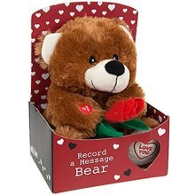 Record A Messege 9'' Love Bear - Message Gift Box 9 Soft Plush Cute Valentine -  record message love bear gift box 9 soft plush cute valentine