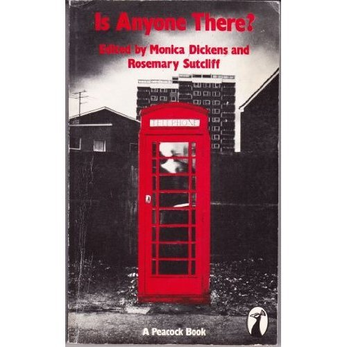 Is Anyone There? (Peacock Books)