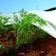 Nonwoven Crop & Plant Cover - Frost Protection - Insect Netting -1.1m X 5m