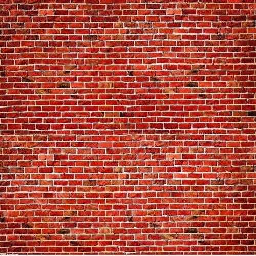 10X10FT Vinyl Red Brick Wall Photography Background Backdrop Studio Photo Prop