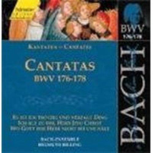 Bach-Ensemble/Helmuth Rilling - Cantatas Bwv176-178(Es Ist Ein Trot - CD