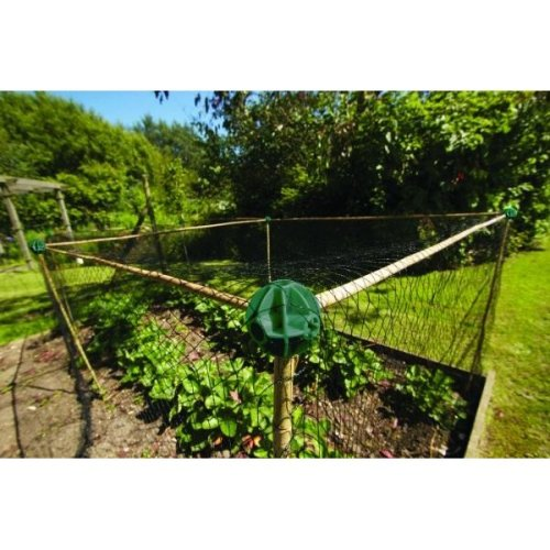 Flexible Cane Balls Pack Of 8 For Garden Fruit Cages And Netting Frames