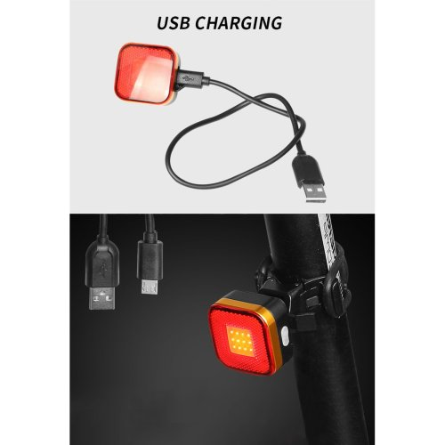 Raypal 2287 USB Rechargeable LED Bike Tail Light