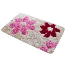 Household Outdoor/Indoor Doormats Antiskid Entrance Mat Carpet Footcloth, C