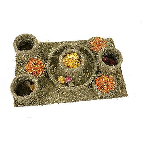 Rosewood Naturals Hide N Treat Maze Boredom Breaker Chew Toy and Treats