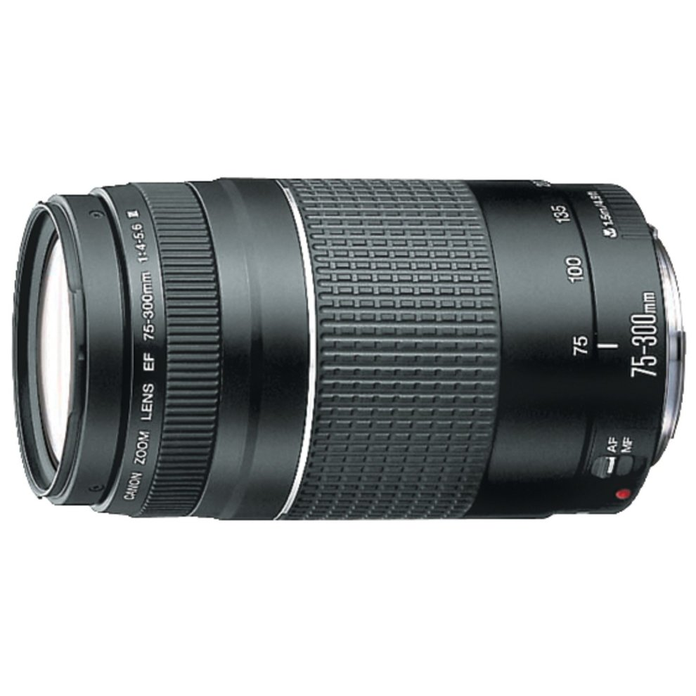 Canon EF 75-300mm f/4 0-5 6 III Filter Size 58mm Zoom Lens (Not USM)