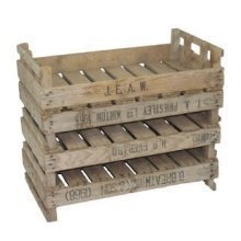 4 Piece Potato Chitting Display Tray