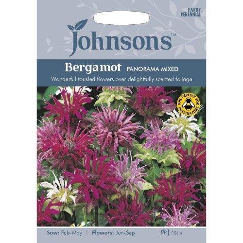 Johnsons Seeds - Pictorial Pack - Flower - Bergamot Panorama Mixed - 100 Seeds